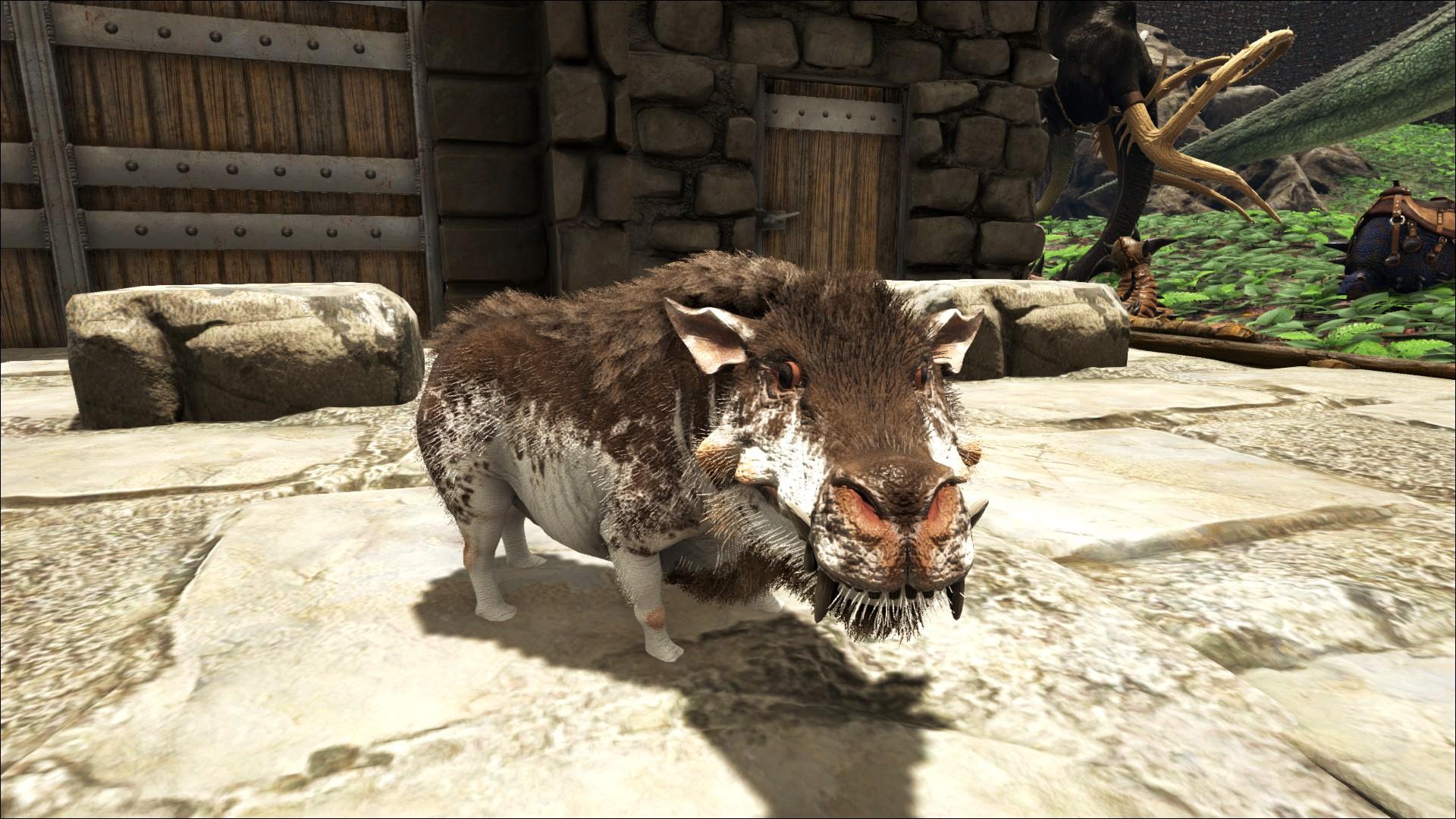 Daeodon (Höllenschwein) - Wiki - Ark Survival Evolved Forum