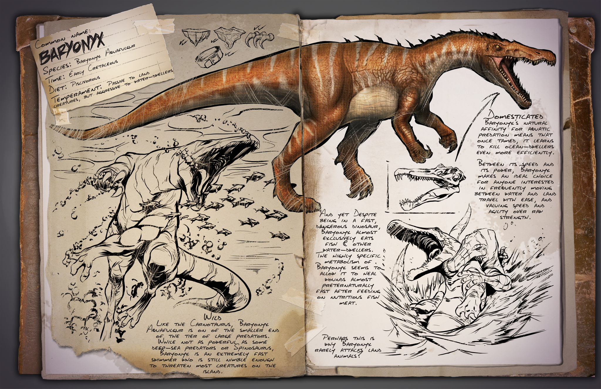 Baryonyx - Wiki - Ark Survival Evolved Forum und Community