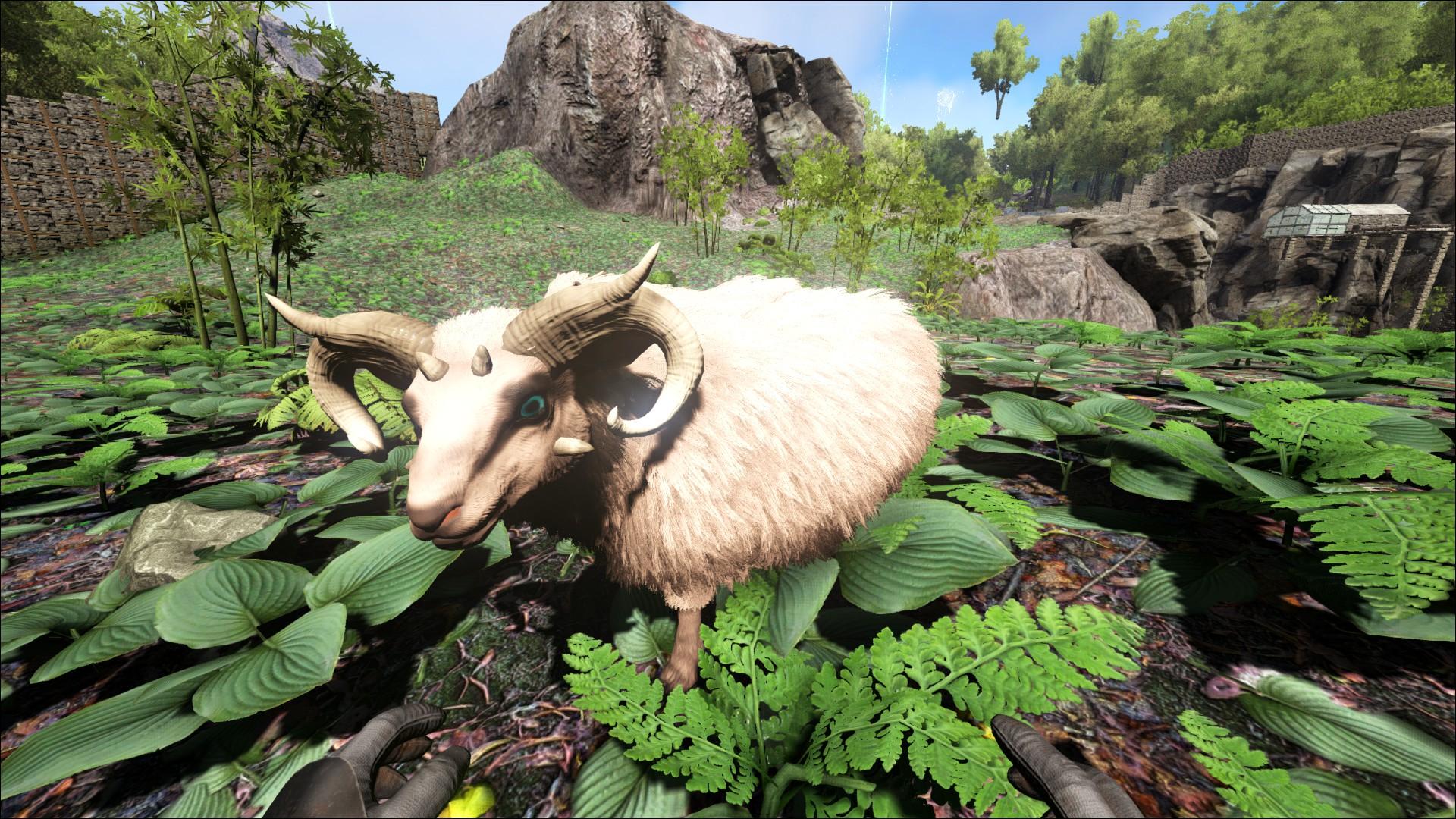 Raw Mutton (Rohes Hammelfleisch) - Wiki - Ark Survival