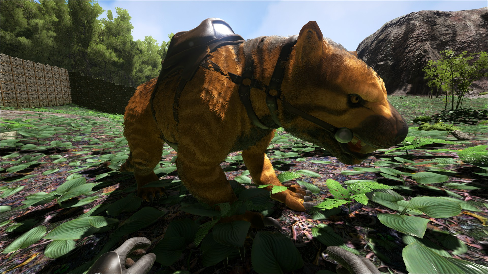 Thylacoleo Beutellöwe Wiki Ark Survival Evolved Forum Und