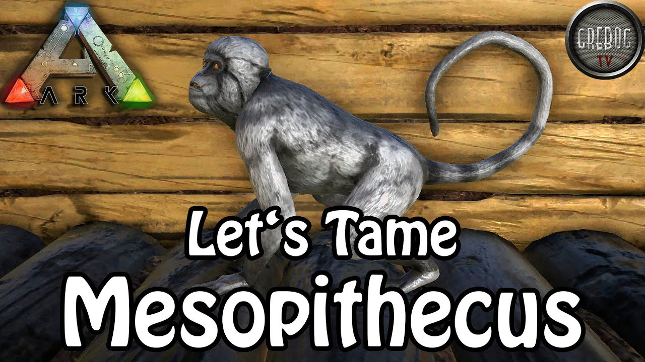 Ark: Survival Evolved - Let's Tame Mesopithecus (deutsch)