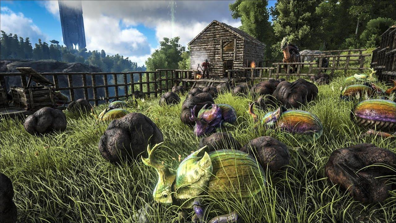 Spotlight: Dimetrodon & Dung Beetle!