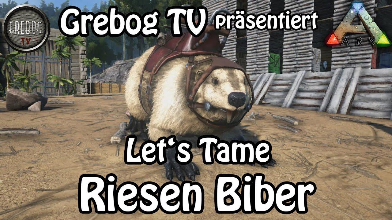 ARK SURVIVAL EVOLVED - Let's Tame: Riesen Biber (deutsch)