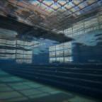 Aquatica Ichthyosaurus Anlegestellen unterwasser