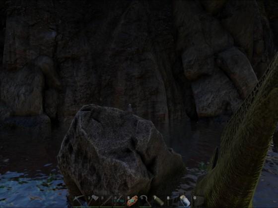Ein Dodo ganz allein ...