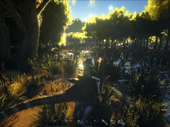 Ausflug in den Sumpf