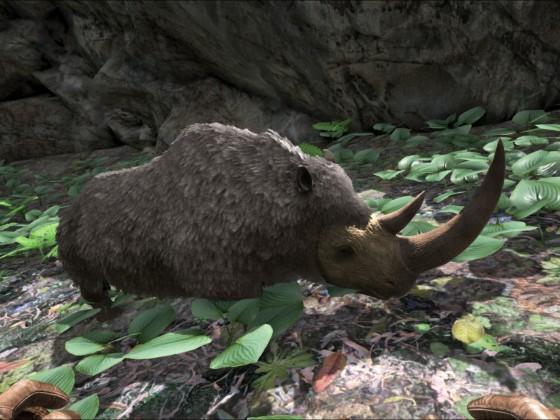 Woolly Rhino Baby