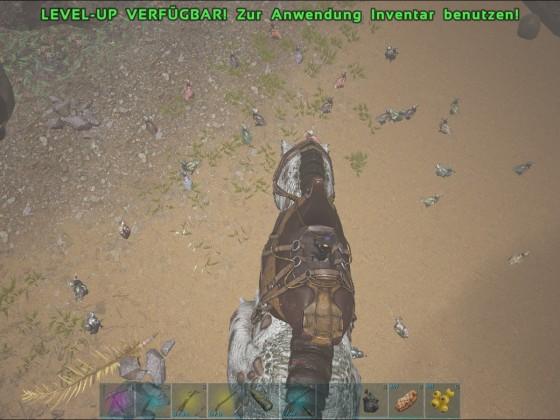 Dodo-Armee auf Alpha-Island / Event-Server