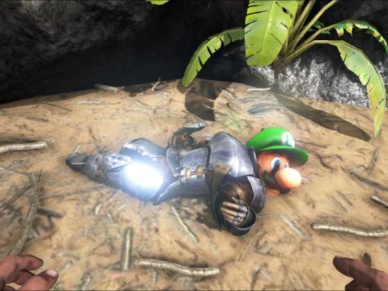 Luigi is gone !!