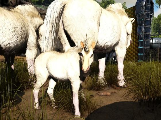 Einhorn Baby