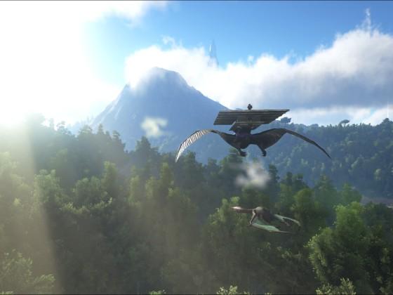 Quetzal betäubt im Fall