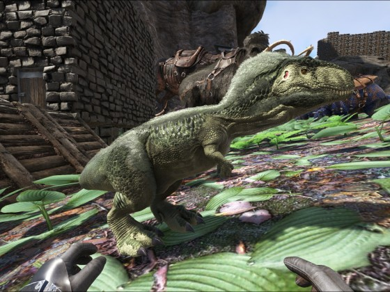 Baby Megalosaurus