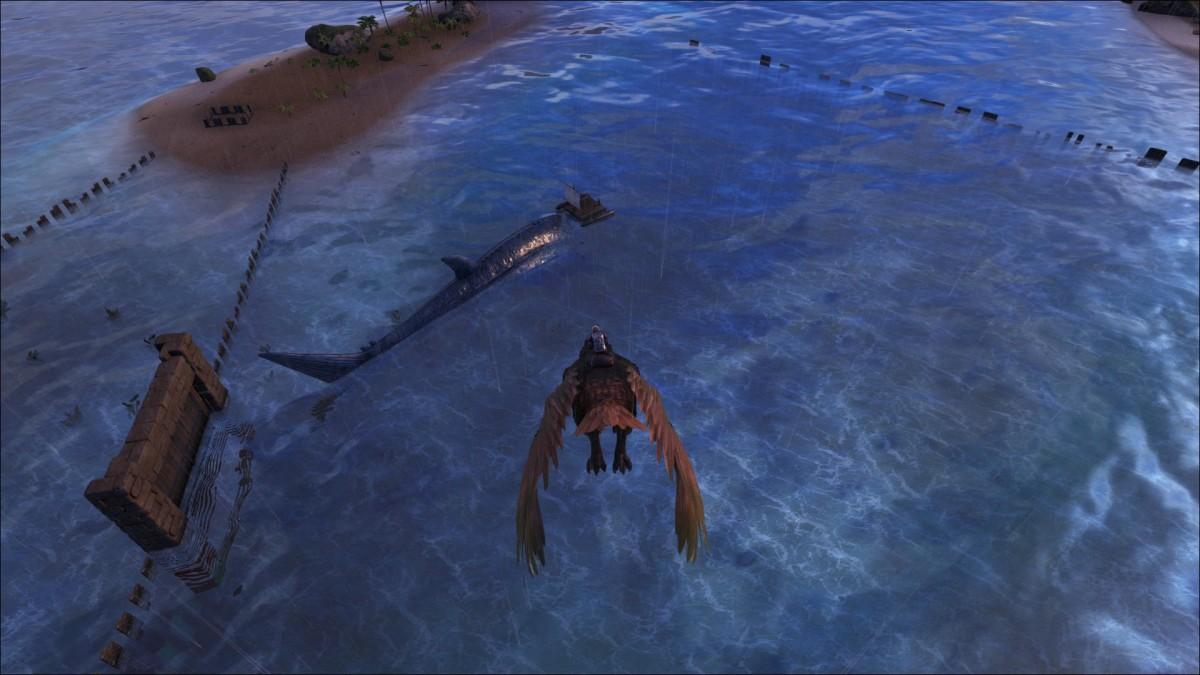 Leedsichthys Ark Survival Evolved Forum Und Community