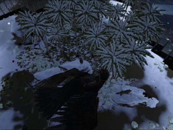 Wolfgehege von oben
